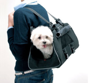 petego-jet-set-pet-carrier1